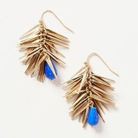 Thistle Coast Earrings by Anthropologie Blue One Size Earrings