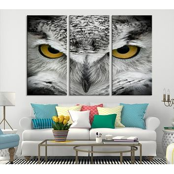 Owl Eye Wall Art Canvas Print