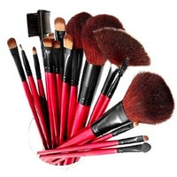 SHANY Professional 13-Piece Cosmetic Brush Set with Pouch, Set of 12 Brushes and 1 Pouch, Red:Amazon:Beauty