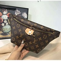 LV Louis Vuitton 2018 counter female high-quality fashionable pockets F-AGG-CZDL coffee