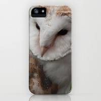 Barn Owl iPhone & iPod Case by Steve Purnell