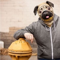 Pug Mask - Time To Look Adorable! - SHIPS FREE