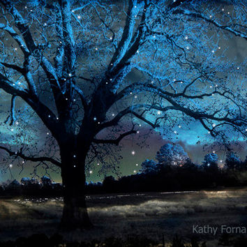 """Nature Photography, Surreal Blue Starry Gothic Trees Nature, Blue Spooky Tree Nature Landscape, Fantasy Gothic Blue Nature Photo 8"""" x 12"""""""