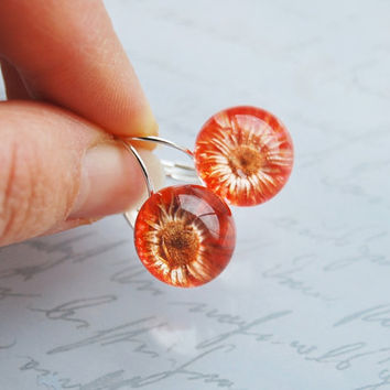 Mini Pressed Flower Earrings Real Flower Resin Ball Orange Daisy Orb Globe Pressed Flower Jewelry Crystal Clear Petite Mother's Day