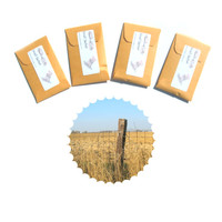 Saddles & Sagebrush Scented Envelope Sachets, Country Candle Party Favors, Home Decor Fragrance, Drawer Freshener, Mustard Blue Western