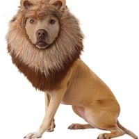 Lion Dog Costume (Small,Brown)