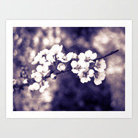 spring flowers 2 Art Print by  Alexia Miles photography