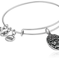 Alex and Ani Because I love you, Sister II Expandable Bangle Bracelet