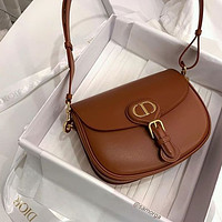 Dior New Style In Early Autumn Saddle Bag