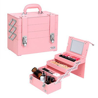 Sunrise Fashionable Synthetic Leather Makeup Artist Cosmetic Train Case with Mirror, Pink