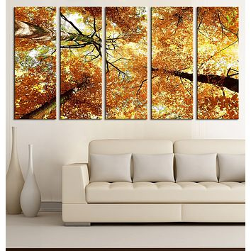Large Wall Art Forest Canvas Print Tree View from Ground in Autumn Framed Ready to Hang Yellow