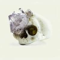 Skull with amethyst growth ring | NOT JUST A LABEL