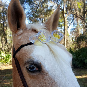 Beer Mug Goggles Browband for Horse or Pony - Equine Tack Costume - Birthday St. Patrick's Day