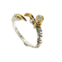 Single Claw with an Opal Ring
