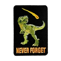 """""""Dinosaur Never Forget"""" Asteroid & Tyrannosaurus Rex Humor - Iron on Embroidered Patch Applique"""