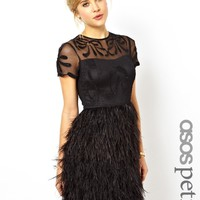ASOS PETITE Exclusive Premium Dress With Feather Skirt