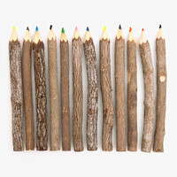 Reclaimed Branch Colored Pencils