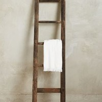 Vintage Apple-Picking Ladder by Anthropologie in Neutral Size: One Size Decor