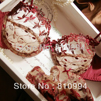 fashion plus size transparent sexy lace embroidery women's underwear bra set ABCD cup