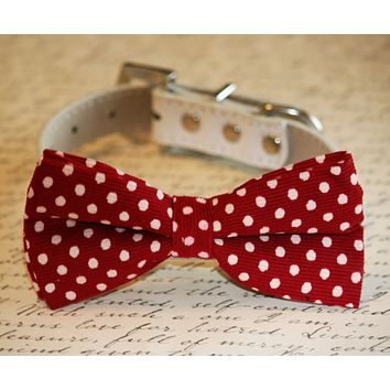 Red polka dots Dog Bow tie, Wedding pet accessory