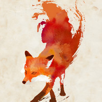 Vulpes vulpes Stretched Canvas by Robert Farkas