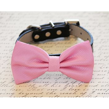 Pink Dog Bow tie with High Quality Leather Collar, Spring wedding dog accessory