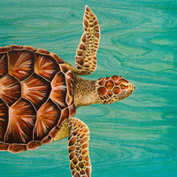 Sea Turtle Swimming Art Print by Summer's Pearl