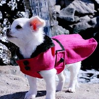 WOOF..cool stuff for dogs