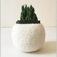 Felted Plant Holder | Cream