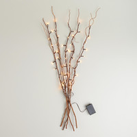 Willow Branch String Lights - World Market