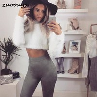 Europe and the United States net red autumn winter 5 color long sleeved turtleneck short Short sweater