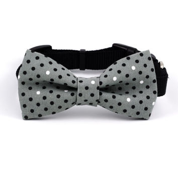 Dog Bow Tie in Gray Dots