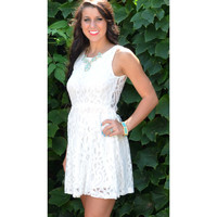 Amazing Lace Ivory Lace Sleeveless Dress