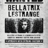 Harry Potter (Bellatrix Wanted) Movie Poster