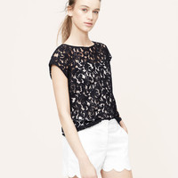 Delicate Lace Top | LOFT