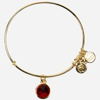 Women's Alex and Ani Birthstone Expandable Wire Bangle