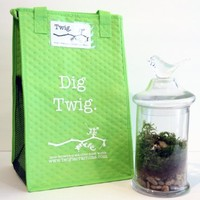 Twig Terrariums Romantik DIY Terrarium Kit