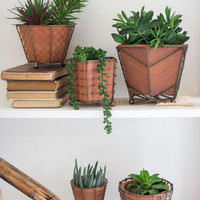 Set Of 5 Terracotta Planters With Wire Wrap