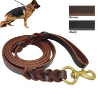 Signature K9 Braided Leather Leash For Medium and Large Dogs