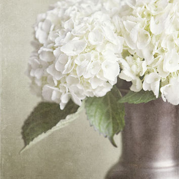 Flower Picture White Hydrangea Spring by LisaRussoPhotography
