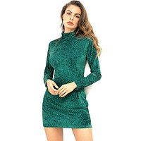 Autumn Winter New Arrival Solid Color Long Sleeves Women Turtle Neck Tight Dress