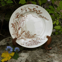 RARE French antique ironstone bird plate, brown transferware plate, country home, french farmhouse decor, vintage plate, brown ironstone