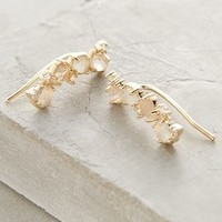 Lucia Climbers by Anthropologie in Gold Size: One Size Sneakers