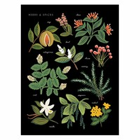 Herbs & Spices Charcoal Art Print by RIFLE PAPER Co. | Made in USA