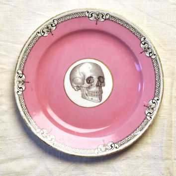 Skull with pink and black  Vintage China Tea Plate for wall art decorative display