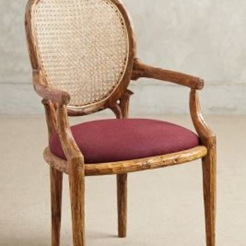 Cane Back Dining Chair by Anthropologie