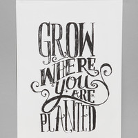 Matthew Taylor Wilson For Society6 Grow Where You Are Planted Print