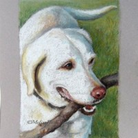 """Custom Pet Portrait - Pastel Drawing 8"""" x 10"""" - For Pet Lovers, Personal Gift"""