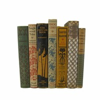Rustic Chic Decorative Book Stack in Brown, Greens and Earth-tones, S/7
