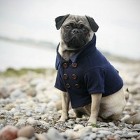 The Skipper Peacoat  XLarge by RoverDog on Etsy